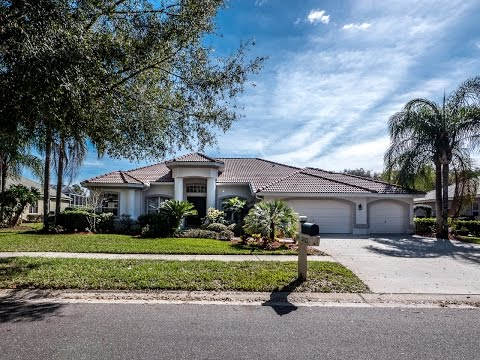 3922 S Nine Drive, Valrico, Florida