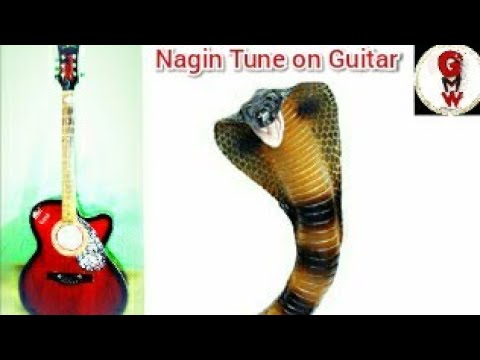 Nagin tune on guitar #most_popular_tune_in_india_nagin_tune #gourabsmusicalworld