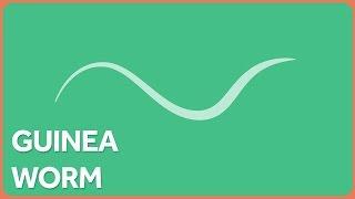 Guinea Worm Eradication and Health Technology