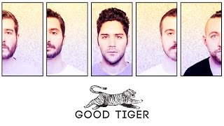 We are Good Tiger