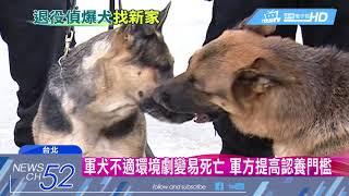 狗年到了,可愛的狗狗,是人類最忠實的夥伴,現在憲兵指揮部軍犬隊,有7...