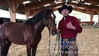 STAGE AVEC LUC PARISIS HORSEMANSHIP LUNDI 5 MARS 2018