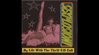 Watch My Life With The Thrill Kill Kult Sexplosion video