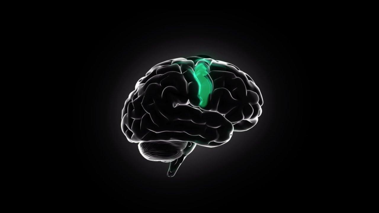 Halo Neuroscience | Upgrade Your Brain