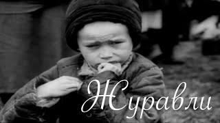 Военная песня - Журавли (Клип) / USSR military song - Zhuravli(Весь военный видеоматериал взять из документальных фильмов компании StarMedia, из цикла ''Великая Война'' . https://ww..., 2016-05-09T22:46:34.000Z)