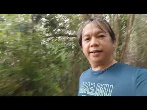 Brunei Katok Trail. The art of creativity
