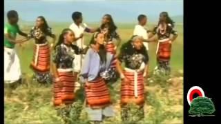 Salihaa Saamii - Haloo Kamisee/Walloo (Oromo-Oromia)