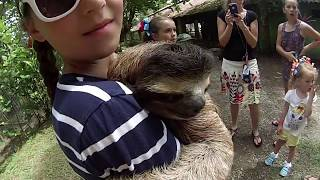 Costa Rica Sloth Party