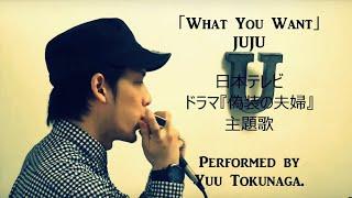 What You Want(JUJU、ドラマ『偽装の夫婦』主題歌)/クロマチックハー...