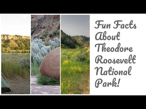 Fun Facts About Theodore Roosevelt National Park!
