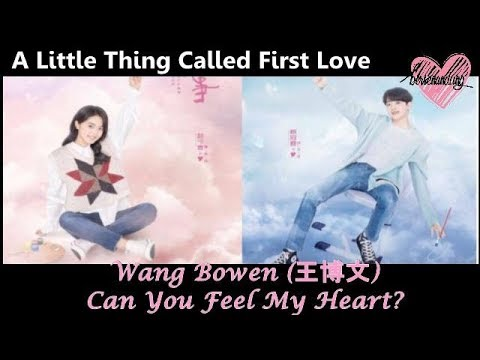 Wang Bowen - Can You Feel My Heart (ENG+INDO+Pinyin) A LITTLE THING CALLED FIRST LOVE OST