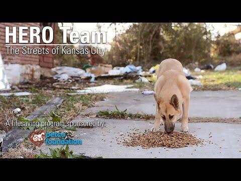 HERO Team: The Streets of Kansas City