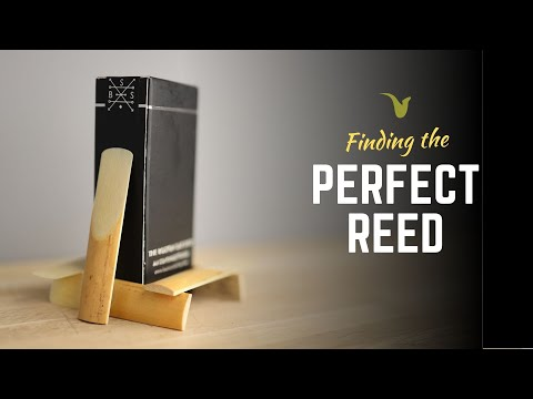 The Best Box Of Reeds I've Ever Played