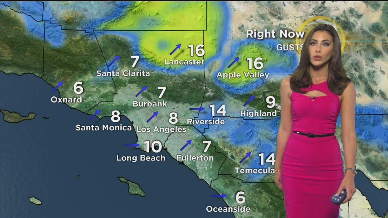 Danielle Gersh's Weather Forecast (June 17)   YouTube