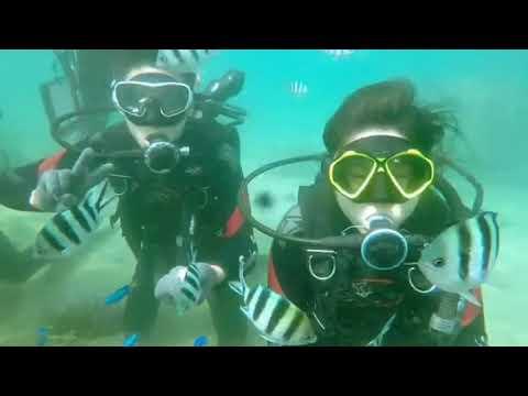 海洋途徑170821/13:30 (澎湖潛水Penghu) - YouTube