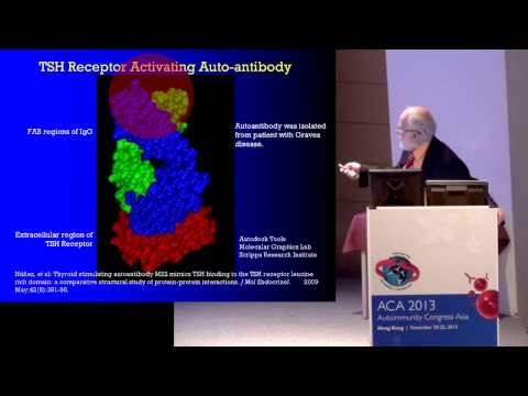 Are autoantibodies the cause, or result, of autoimmune disease?