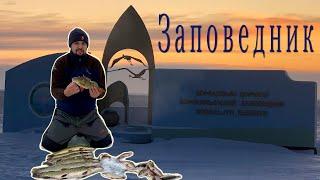 Рыбалка на заповеднике озеро Султанкельды Раздача крупного окуня и гигантской плотвы Щука