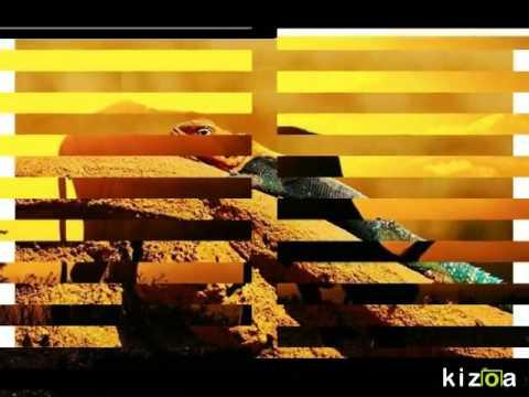 Copy of Kizoa Video Maker: chemistry experiment