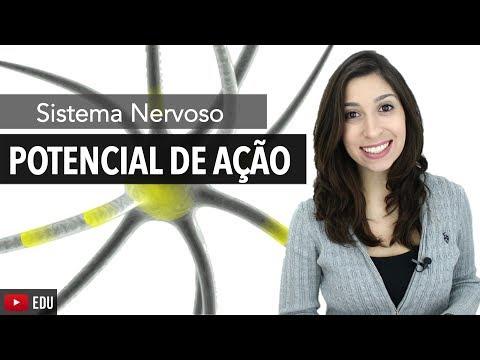 Sistema Nervoso 5/6: Potencial De Ação