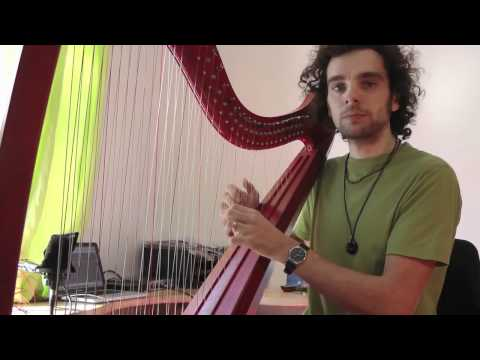 African Suite - elektro with live harp, ethnic flute and djembé
