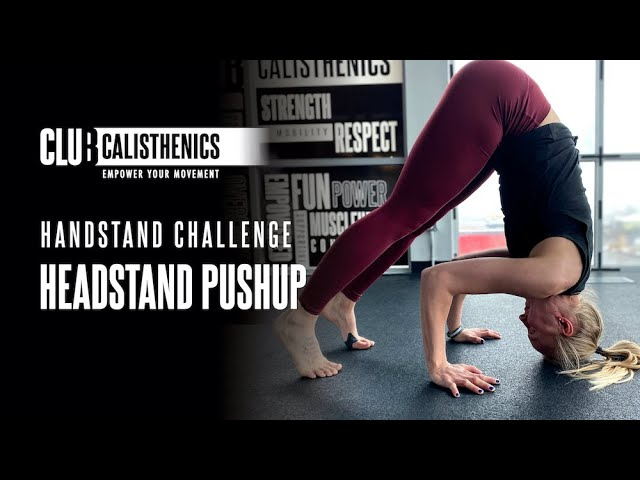 DAY 17 - Headstand Push-ups