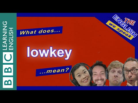 What Does 'lowkey' Mean? The English We Speak