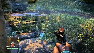 Far Cry4 - Athlon 860k, HD 7770 - medium