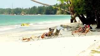 Flying Beach Bird in Bintan of Indonesia