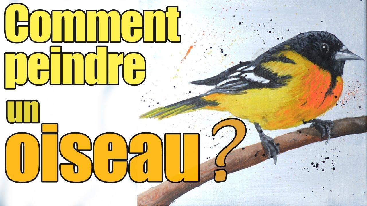 Comment peindre un oiseau youtube - Comment faire fuir les oiseaux ...