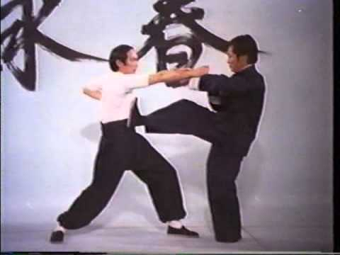 Wing Chun - The Science of InFighting (Wong Shun Leung) LEGE