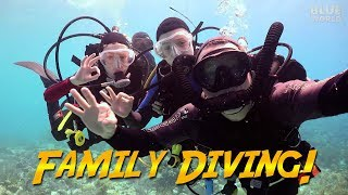 Family Diving in Bonaire | JONATHAN BIRD'S BLUE WORLD