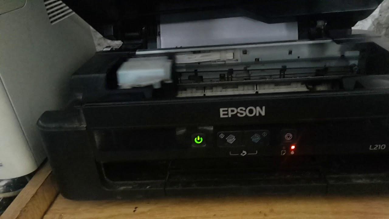 yan 12 Feet Cord for EPSON NX230 NX300 NX305 NX415 NX420 NX510 NX515 Printer