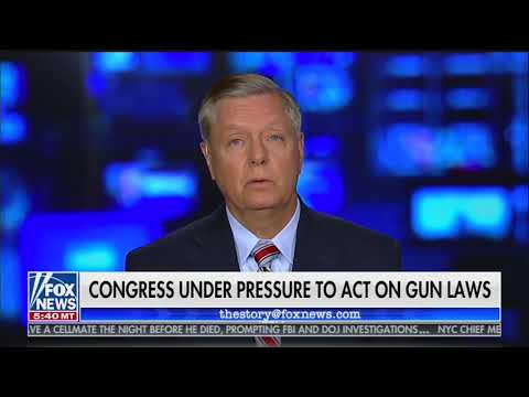 'Second Amendment is not a suicide pact': Lindsey Graham expresses support for 'red flag' laws