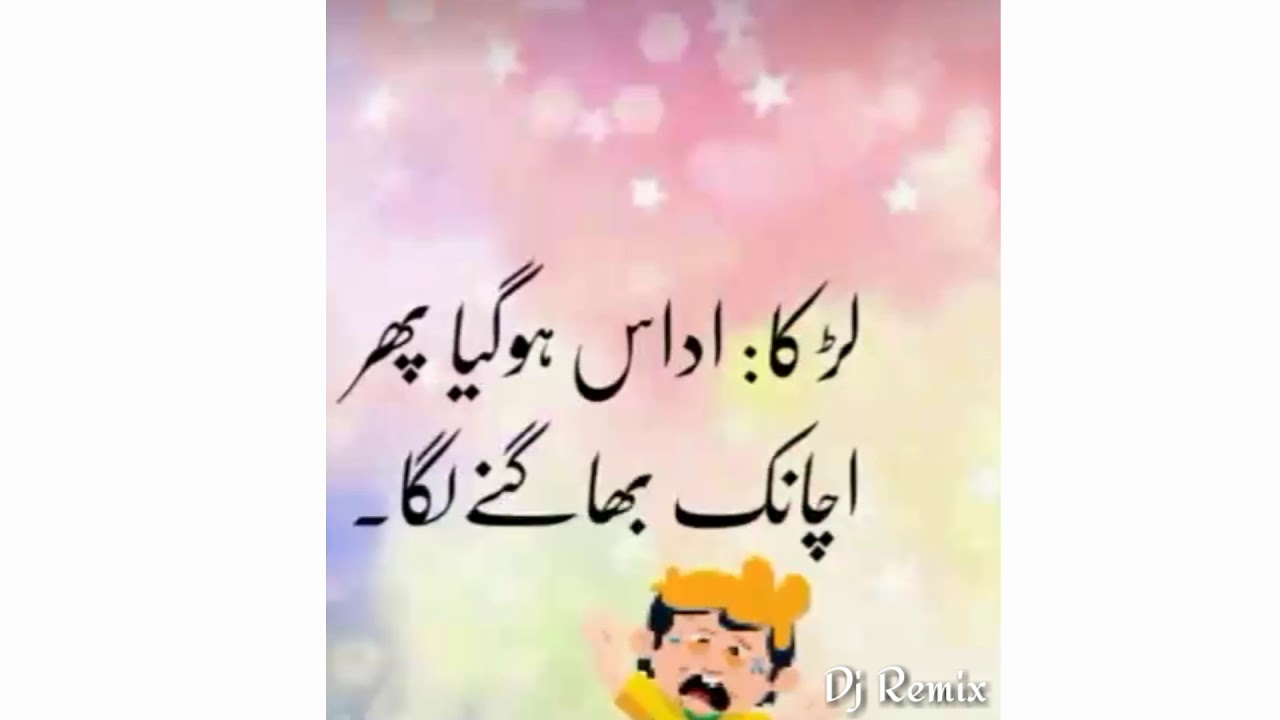 Funny Status Urdu Urdu Status New Whatsapp Status Urdu Whatsapp Status Nora Fatehi Song Sound Youtube
