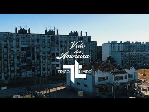 Trigo Limpo - Vale da Amoreira (Audiomotion)