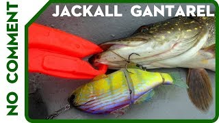 Jackall Gantarel. Ловля щуки на свим-бейт. Swimbaits & Pike