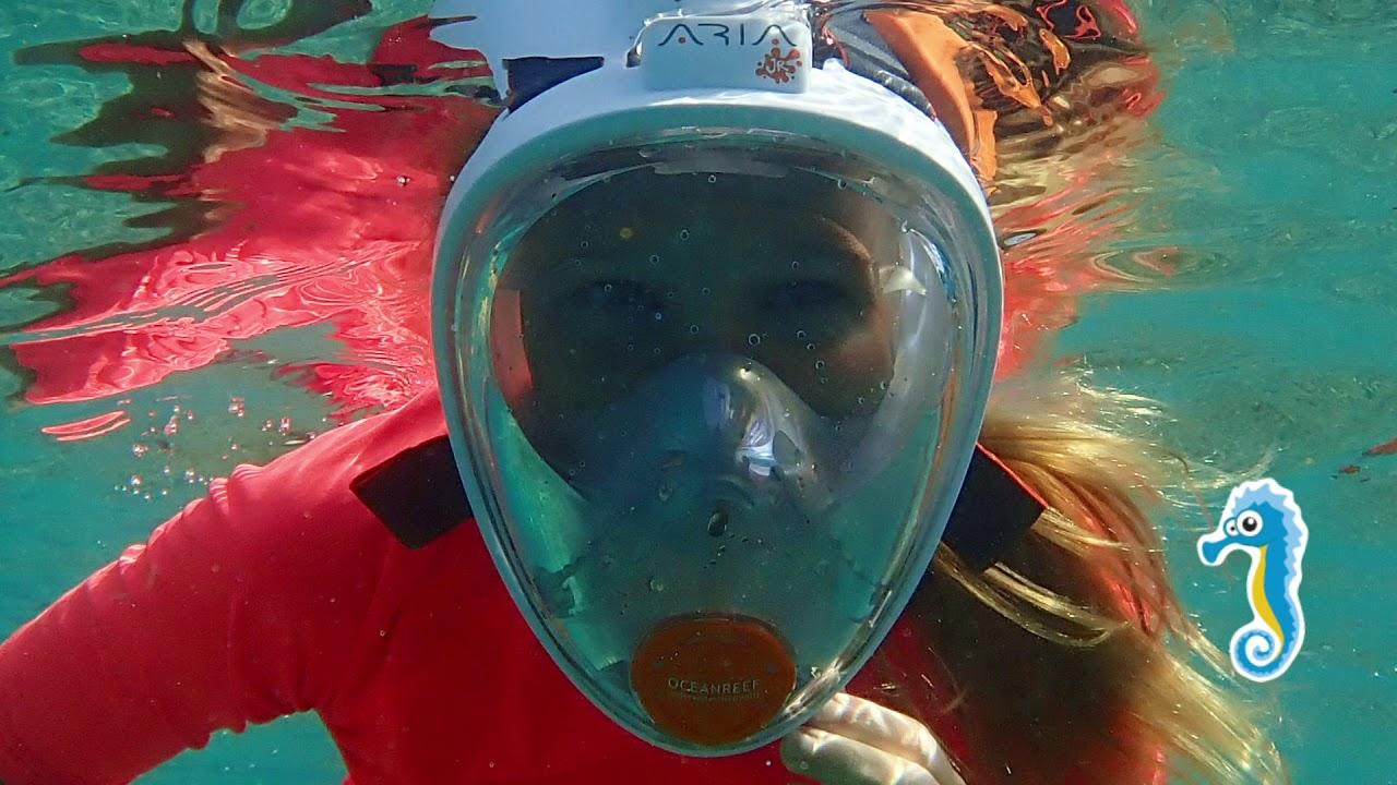 Oceanreef Aria Junior
