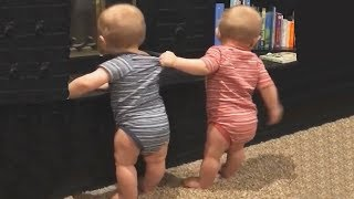 funny twins fighting