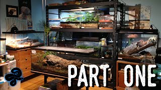 Reptile Room Tour May 2016 | Over a DOZEN New Animals!