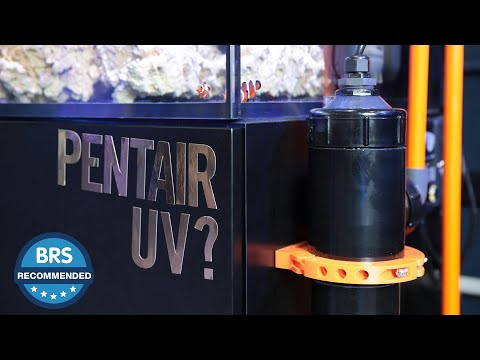 It's BRS Recommended - The Pentair UV Sterilizer...(formerly Emperor Aquatics UV)