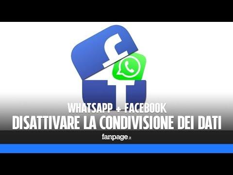 Come impedire a WhatsApp di condividere i dati con Facebook