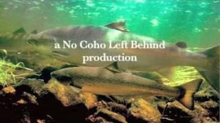 Saving Salmon, Saving Us