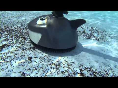 'Lil Shark™ Cleaner