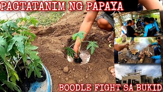 PAGTATANIM NG PAPAYA + BOODLE FIGHT (SALO-SALO) SA BUKID | APRIL 23, 2021.