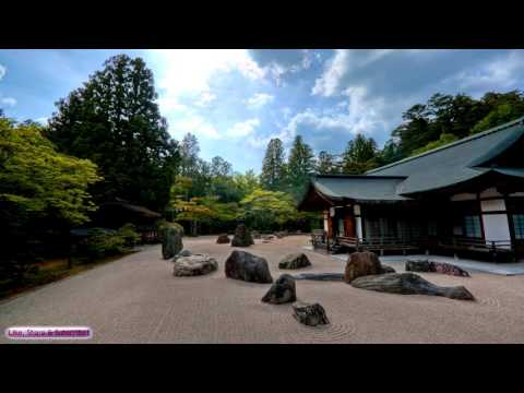 Japanese Koto Music   Senbonzakura   Beautiful Energetic Japanese Koto