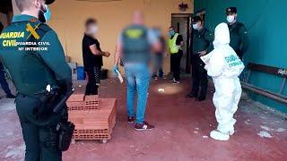 Desmantelan un punto de venta de droga en Llano de Brujas (Murcia)