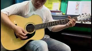 Morris F30 acoustic guitar MIJ 1980s