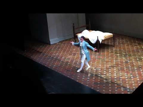 W. A. Mozart - NON SO PIU' COSA SON, COSA FACCIO - Raffaella Milanesi