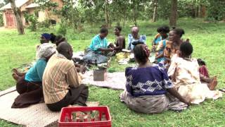 Forests and village saving schemes in Uganda