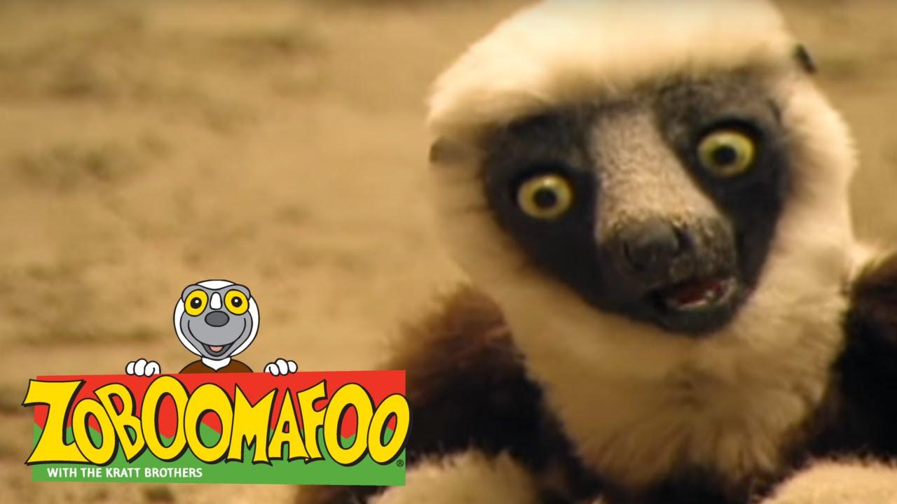 Zoboomafoo 133 - Sand Creatures (Full Episode)